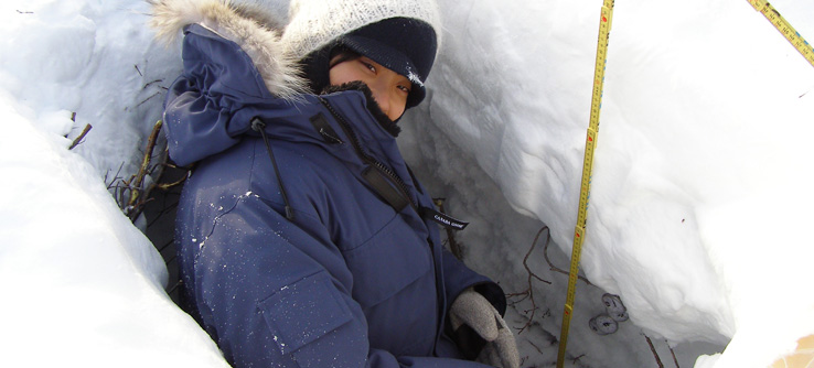 Climate change researcher taking snow samples in the Canadian Arctic.