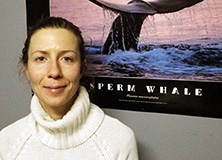 Investigating Whales and Dolphins of the Norwegian Arctic