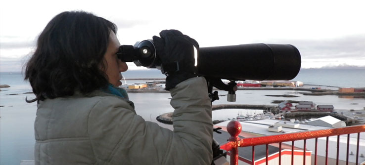 From a lighthouse, a team member scans the ocean for whales.