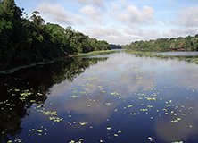 Samiria River, a major Amazon tributary.