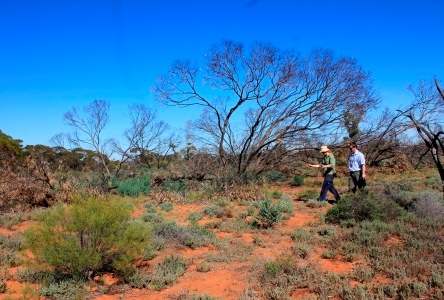 Student Challenge enables teen students to participate as research assistants on Earthwatch Australia environmental expeditions