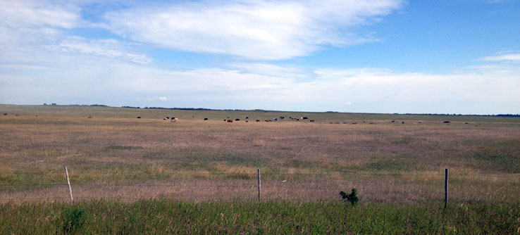 Saskatchewan is the heart of Canada's grasslands.