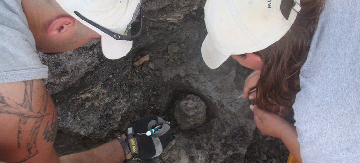 Digging for dinosaurs on an Earthwatch paleontology expedition