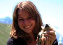 Marion Tafani caring for a marmot.