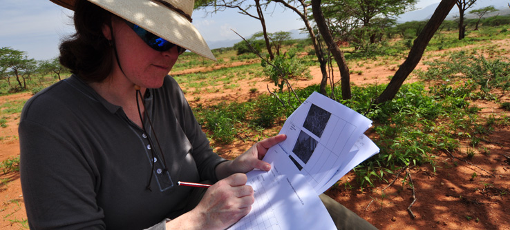 Volunteer recording vegetation in Samburu, Kenya.
