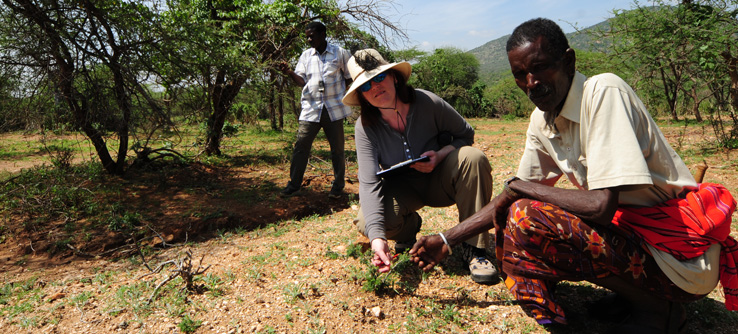 Conservation team tracking zebra's in Samburu, Kenya