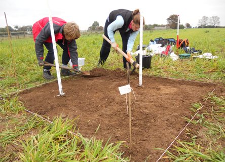 Volunteers digging at the Earthwatch archaeological site in Devon, UK