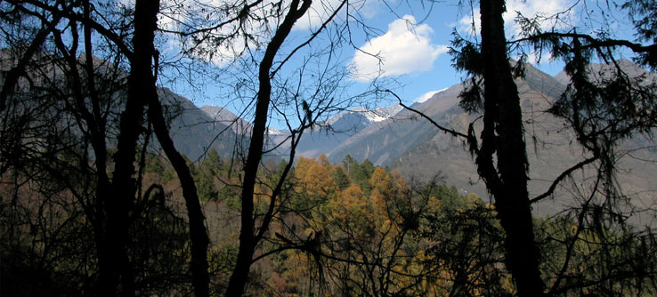 The Wolong National Nature Reserve sits in a beautiful mountainous region.