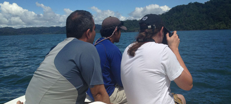 Earthwatch Expeditions: Safeguarding Whales and Dolphins in Costa Rica