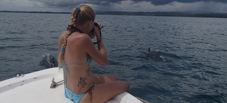 Earthwatch Teen Expedition: Safeguarding Whales and Dolphins in Costa Rica