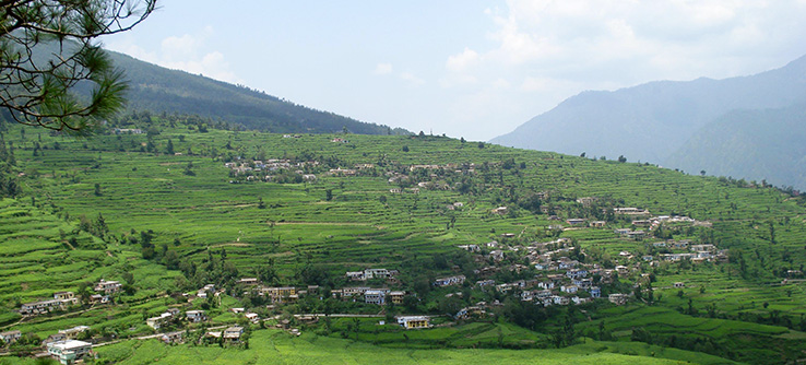 Agricultural landscape, Kullu Valley, India