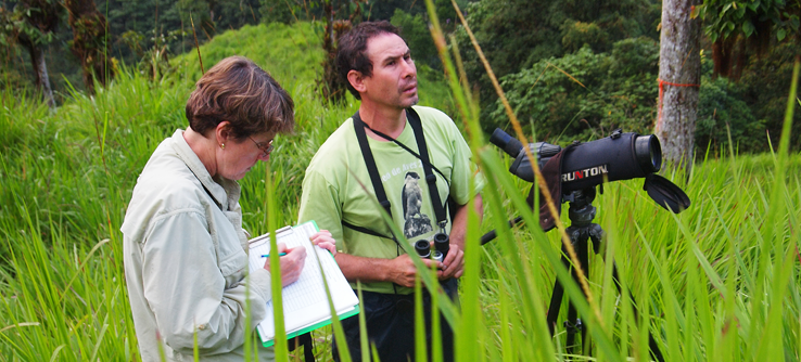 Volunteers on a birdwatching survey in rainforest