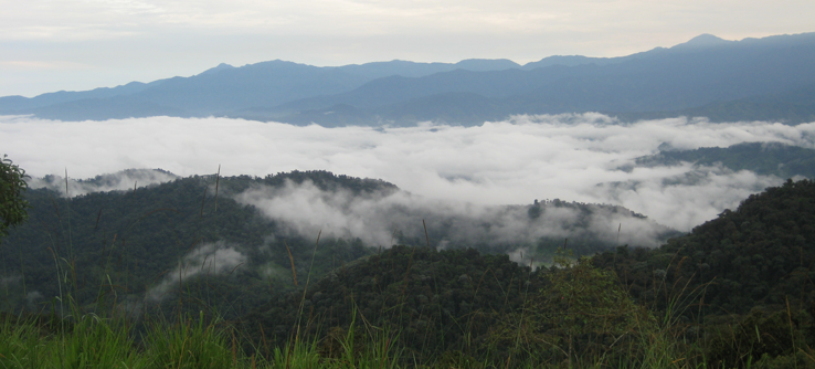 Santa Lucía Cloud Forest Reserve, Ecuador