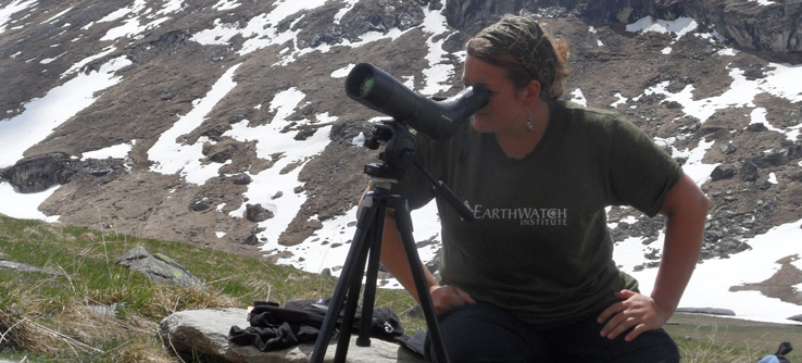 Earthwatch volunteer observing marmots in the French Alps