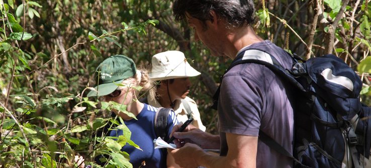 Volunteers recording vegetation in Masaya National Park