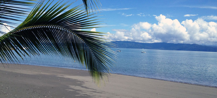Lush forests and beaches surround Golfo Dulce.