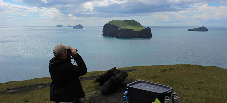 You will use binoculars on land to search for the presence of killer whales in the study area.