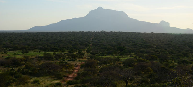 Kasigau Corridor is located between Tsavo East and West National Parks in Kenya.