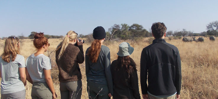Teams find and record locations of individual rhinos to assess their geographic distribution.