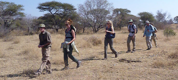 Volunteers conduct vegetation surveys to assess rhino habitat use.