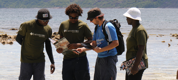 Volunteers studying coral reef biology