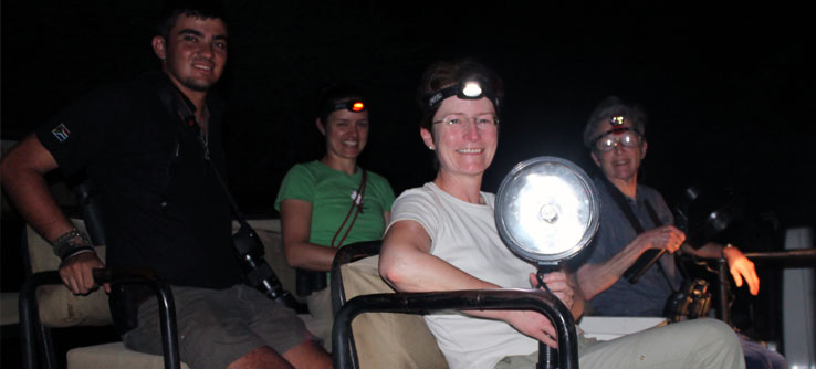 Volunteers take a spotlight out at night to count predators.