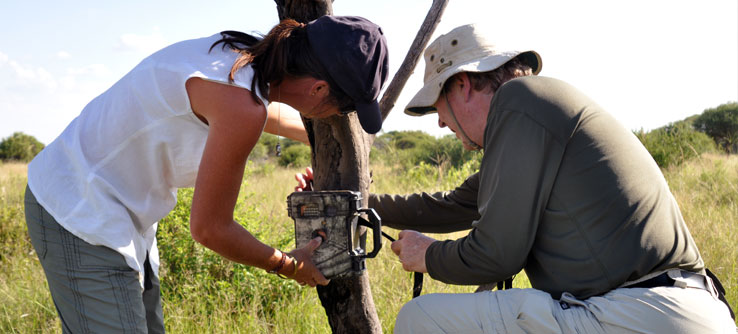 Team members set up a camera trap to take photos of animals that pass by.