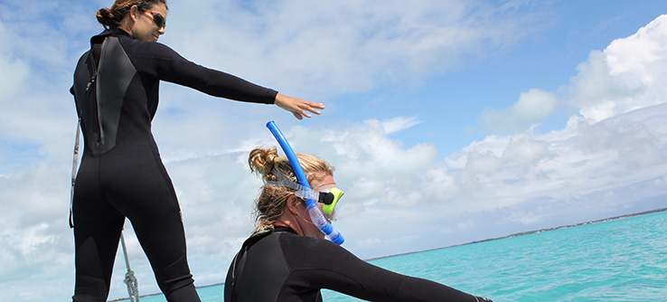 Earthwatch Teen Expedition: Swimming with Sea Turtles in the Bahamas