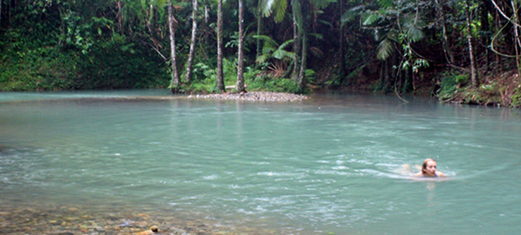 Volunteer swimming in clear water, Daintree River coastline, Australia
