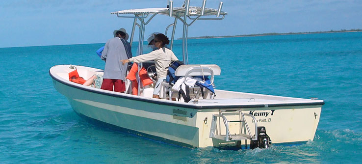 Lead scientist Annabelle Brooks spots a turtle from a research boat.