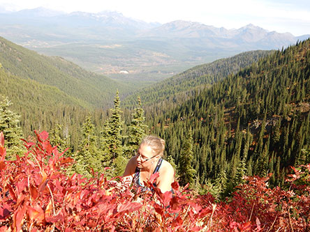 Tabitha works with citizen scientists to use innovative research methods to determine the impact of climate change on bear foods such as huckleberries.