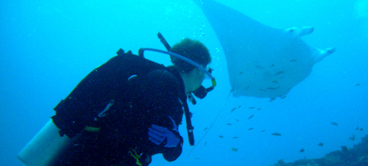 Earthwatch diver and manta ray, Great Barrier Reef, Australia