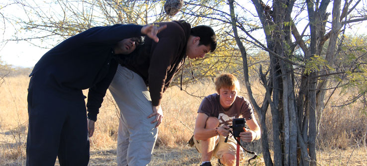 camera traps being set up tracking predators of the African Savannah project
