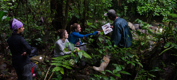 Earthwatch Expedition: Tracking Costa Rica's Mammals