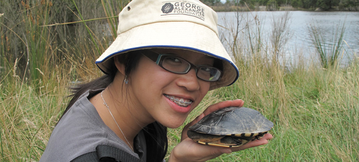 Earthwatch Expedition: Turtles on the Move, Australia
