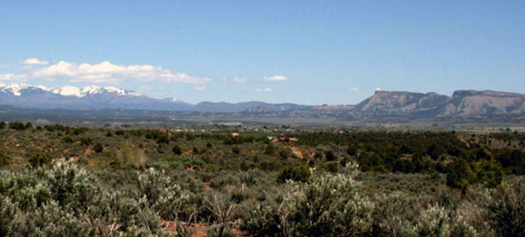Take in the striking scenery of the Southwest from the work site.