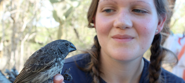 A researcher examines a finch.