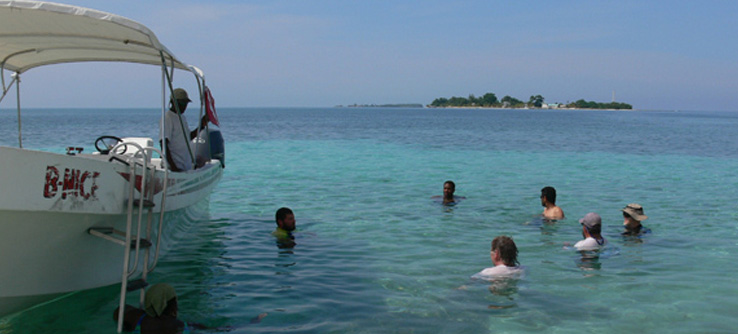Earthwatch volunteers swimming in clear Caribbean Sea, Belize