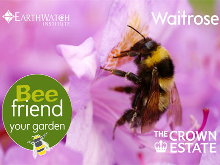 Waitrose Bee Friendly Your Garden'App
