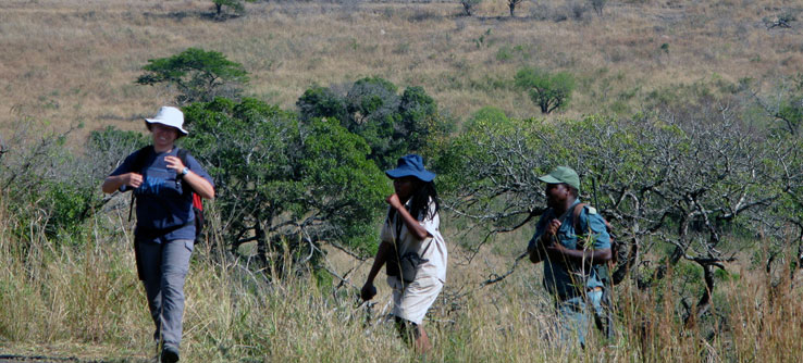 Earthwatch Expeditions: Walking with African Widlife