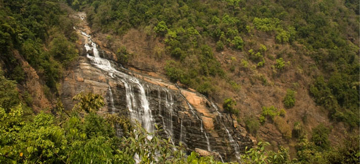 Sirsi sits within the foothills of the Western Ghats forests, which range from 400-800 m above sea level.