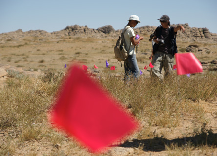 Research volunteers recording vegetation on the Mongolian steppe