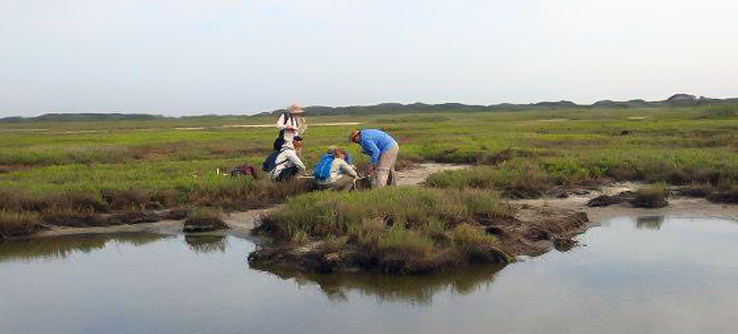Teams collect environmental data such as surface water quality and water salinity levels.