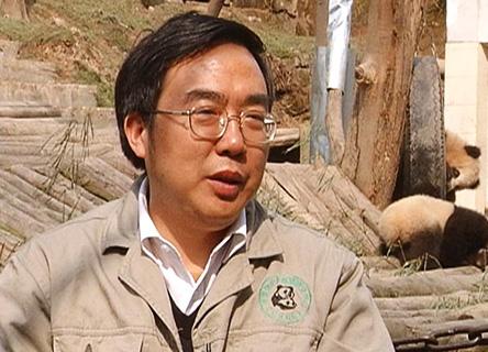 Professor Zhang Hemin