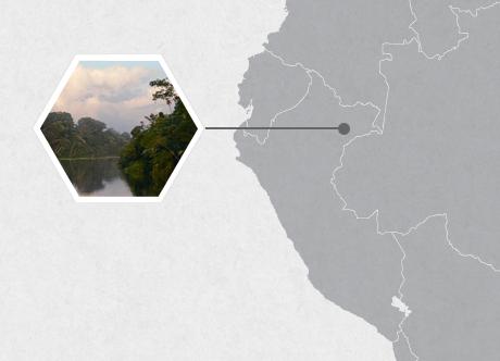 Samiria River, Peru, South America
