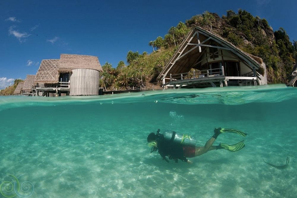 Paradise Diving: Indonesia