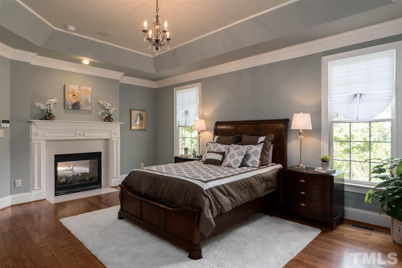 with tray ceiling and fireplace