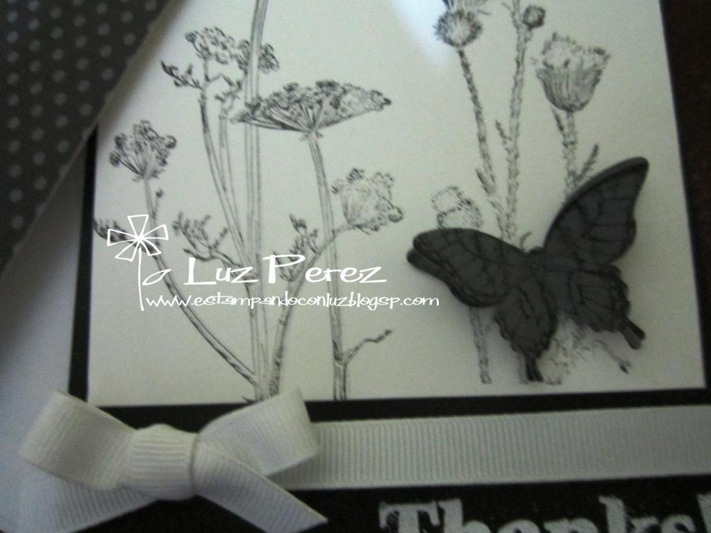Diseño Blanco y Negro
