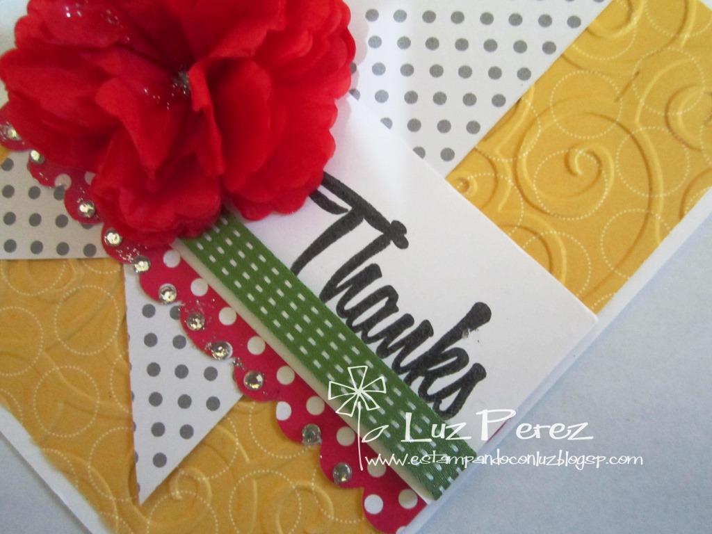Rosa Roja para dar Gracias