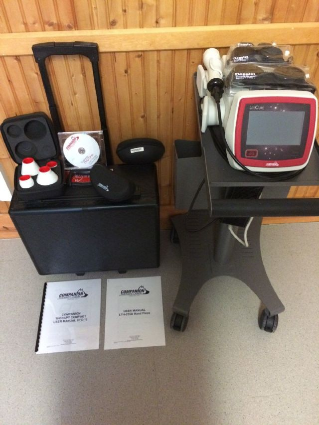 Companion Veterinary Therapy Laser System 12W
